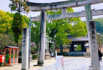 博多阪急にてリミテッドエディション予約会