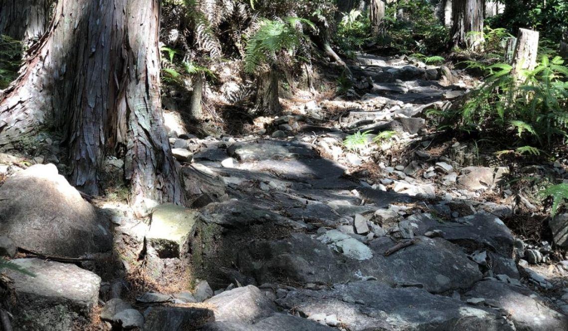 熊野古道 伊勢路を歩く
